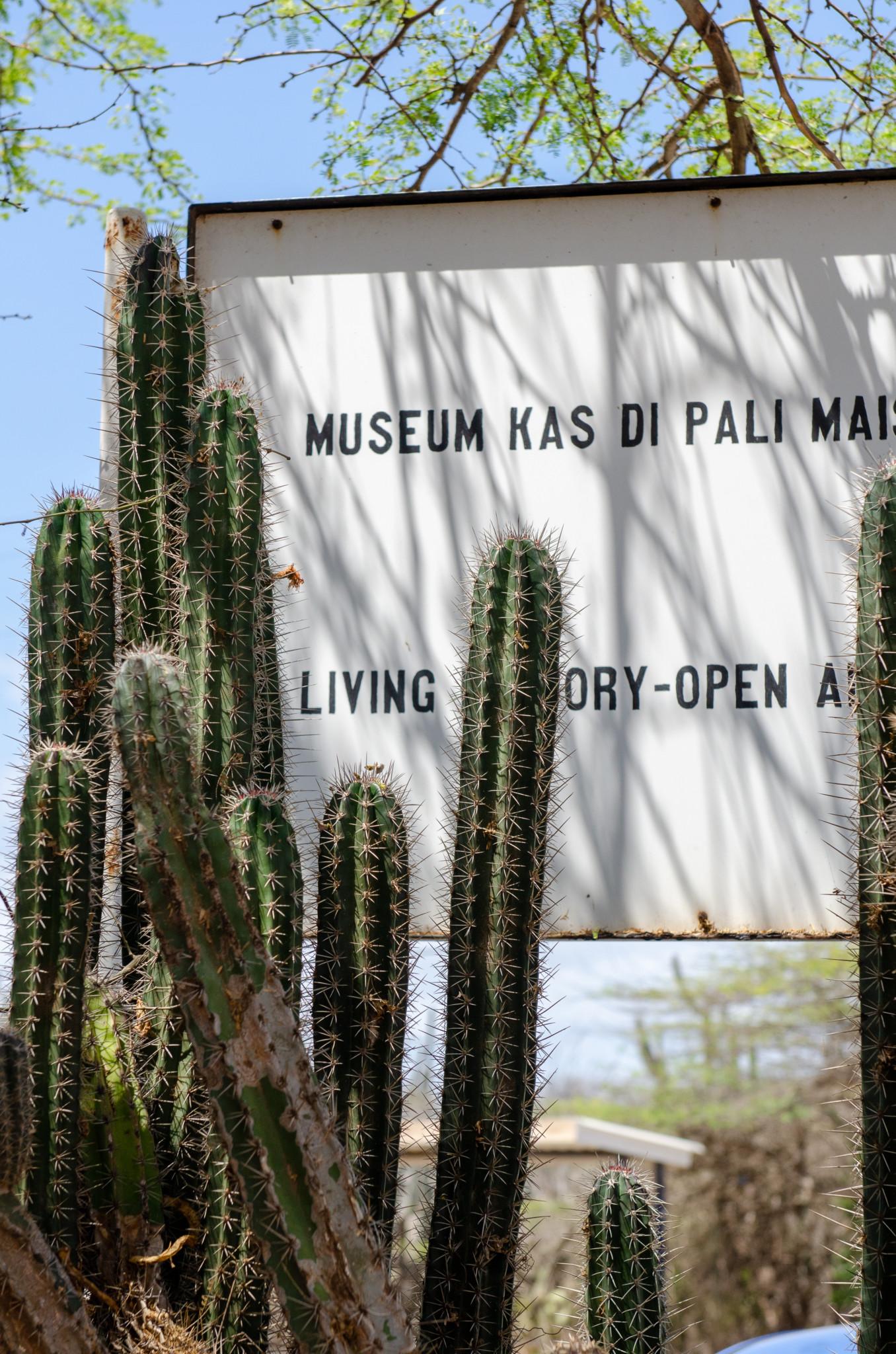 Kas di Pali Maishi Museum auf Curacao