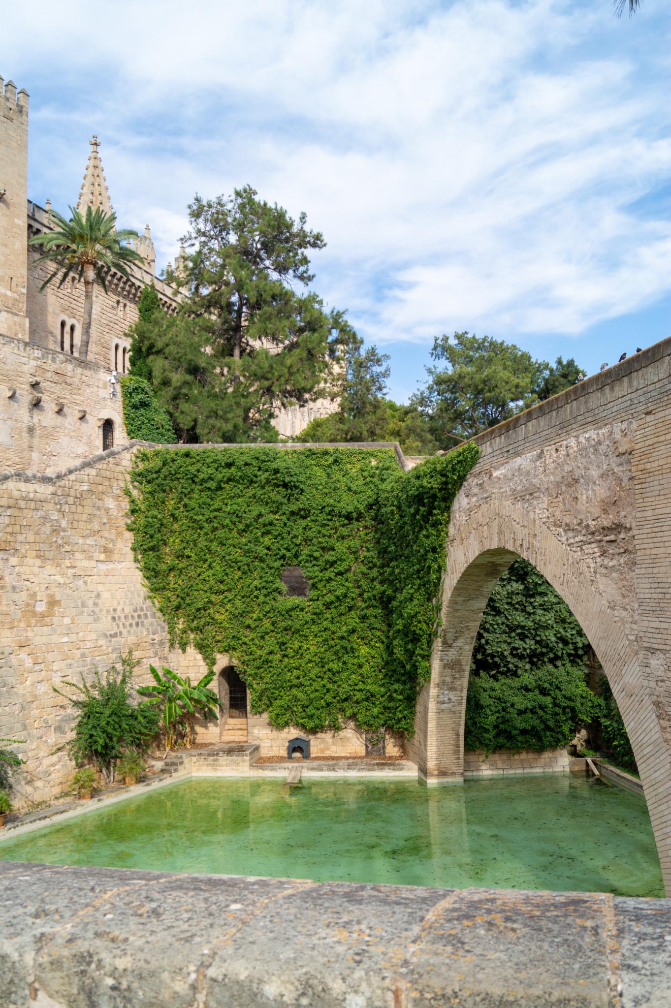 Besuch in der Kathedrale von Palma