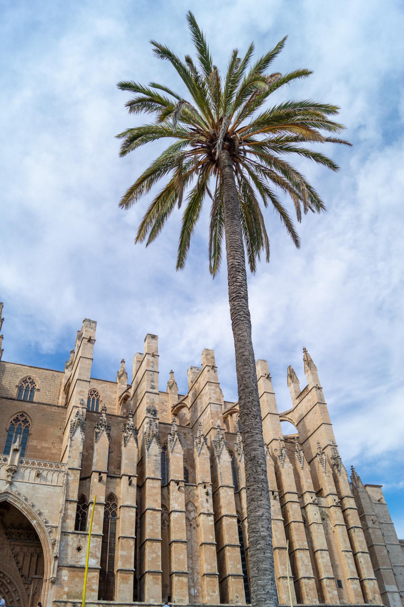 Die Kathedrale von Palma gehört zu den wichtigsten Sehenswürdigkeiten