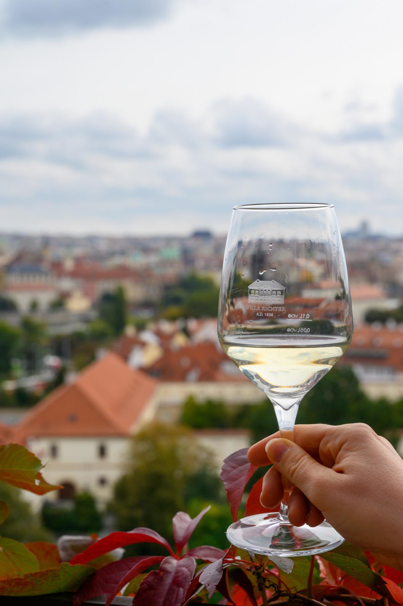 Ausblick von den Weinbergen auf die tschechische Hauptstadt