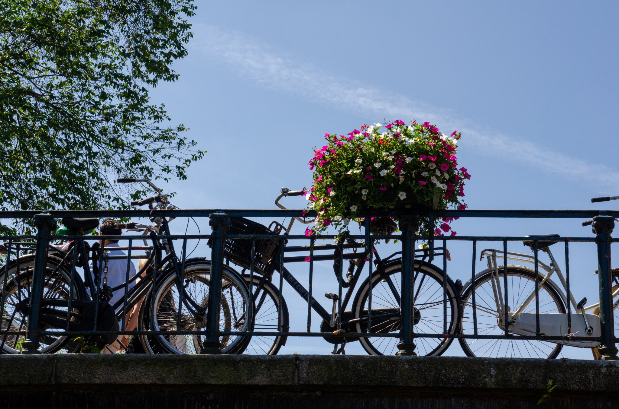 Mit dem Fahrrad durch Amsterdam