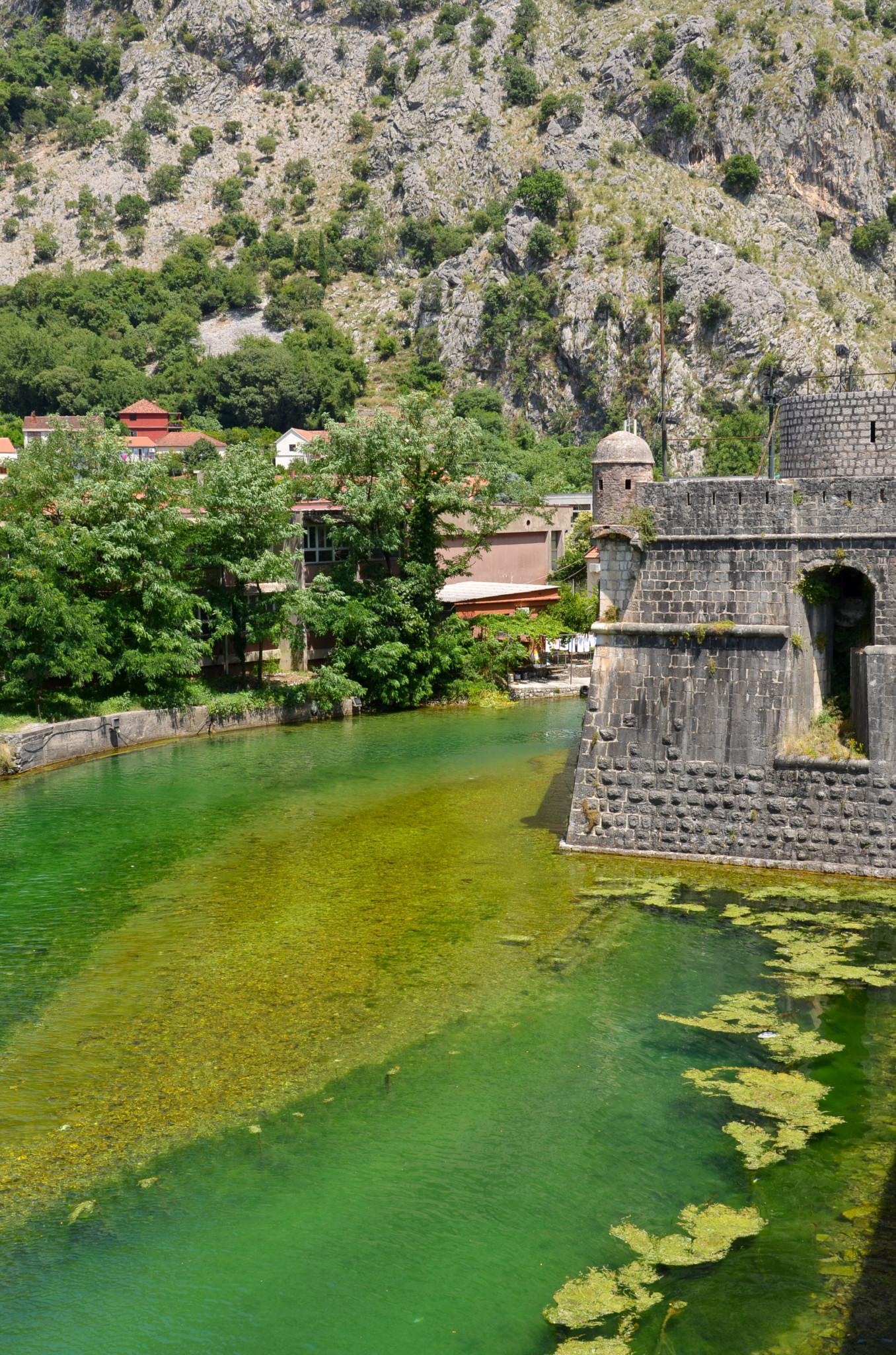 Die Stadtmauer von Kotor in Montenegro mit Graben