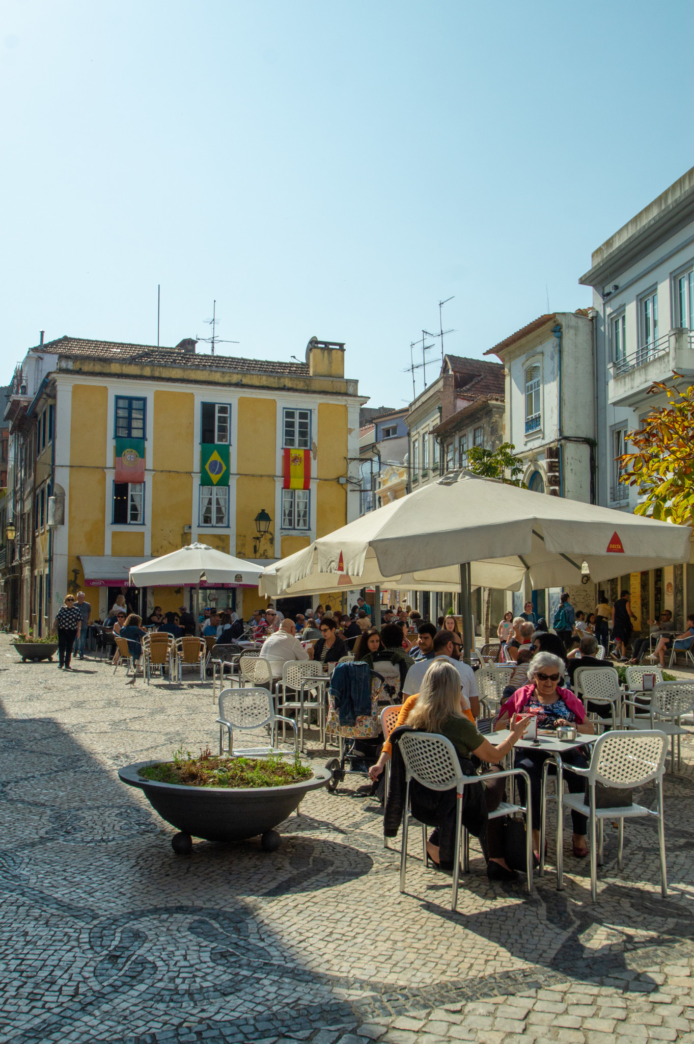 Marktgeschehen in Aveiro