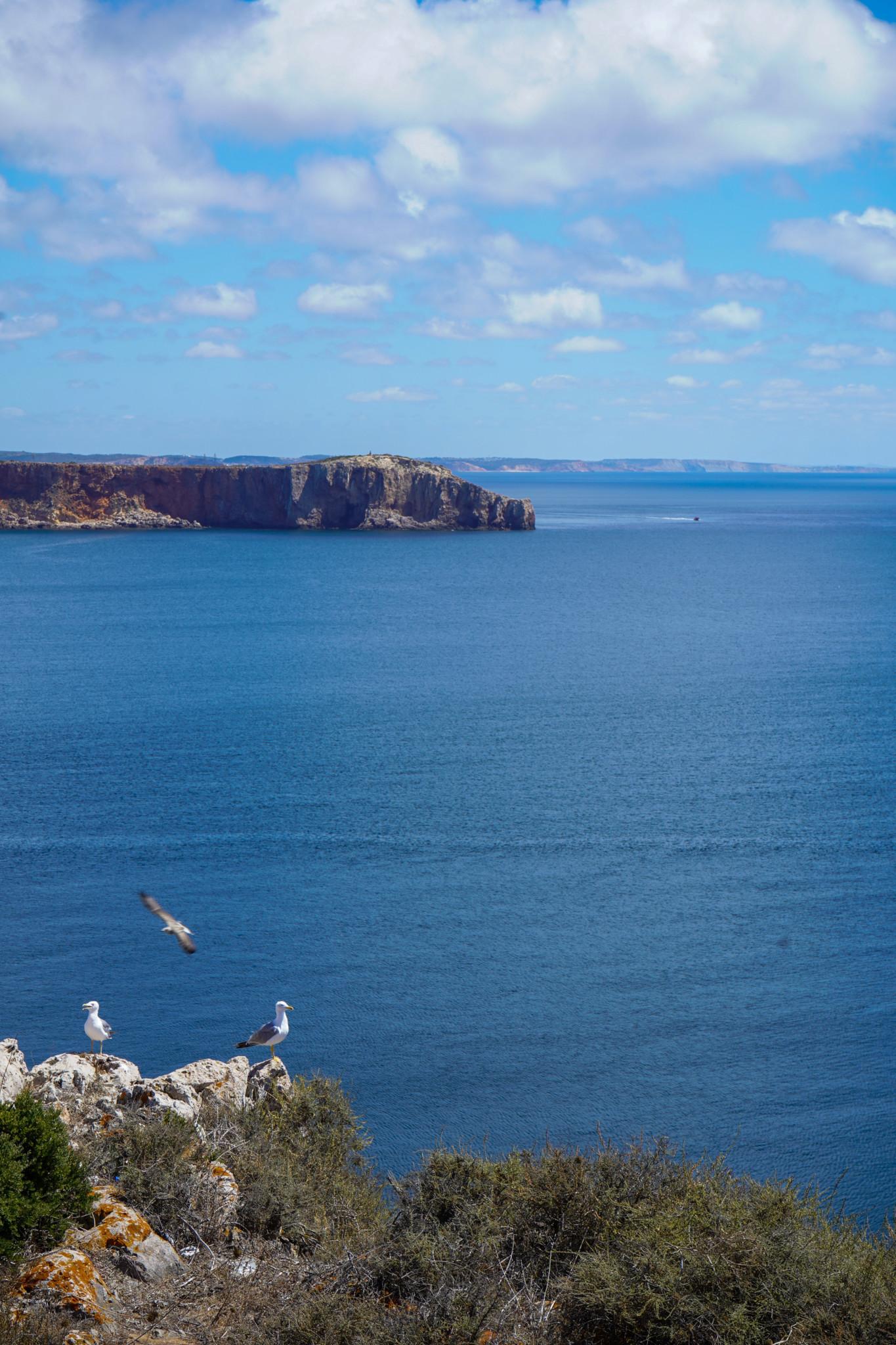 Ausblick Cabo de Sao Vicente Algarve