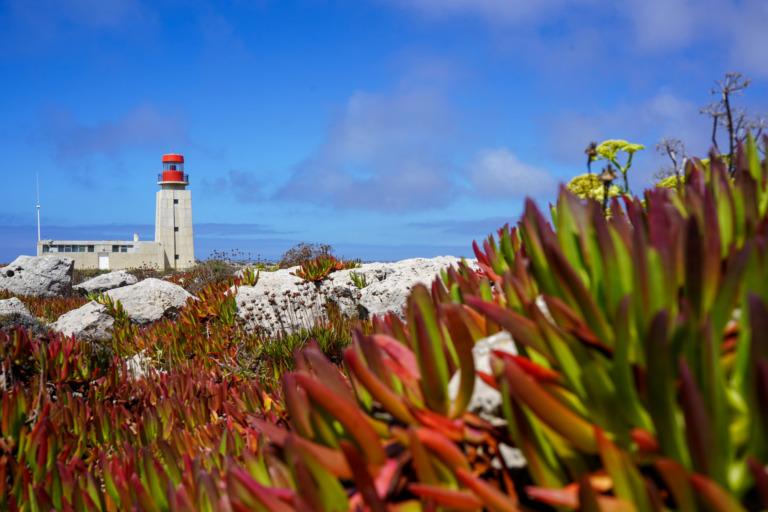 Traumhafte Algarve: Unsere 11 liebsten Spots in der Region