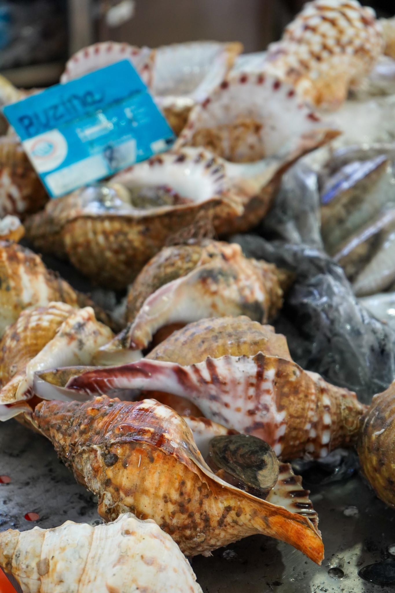 Frischer Fisch auf dem Markt von Loule