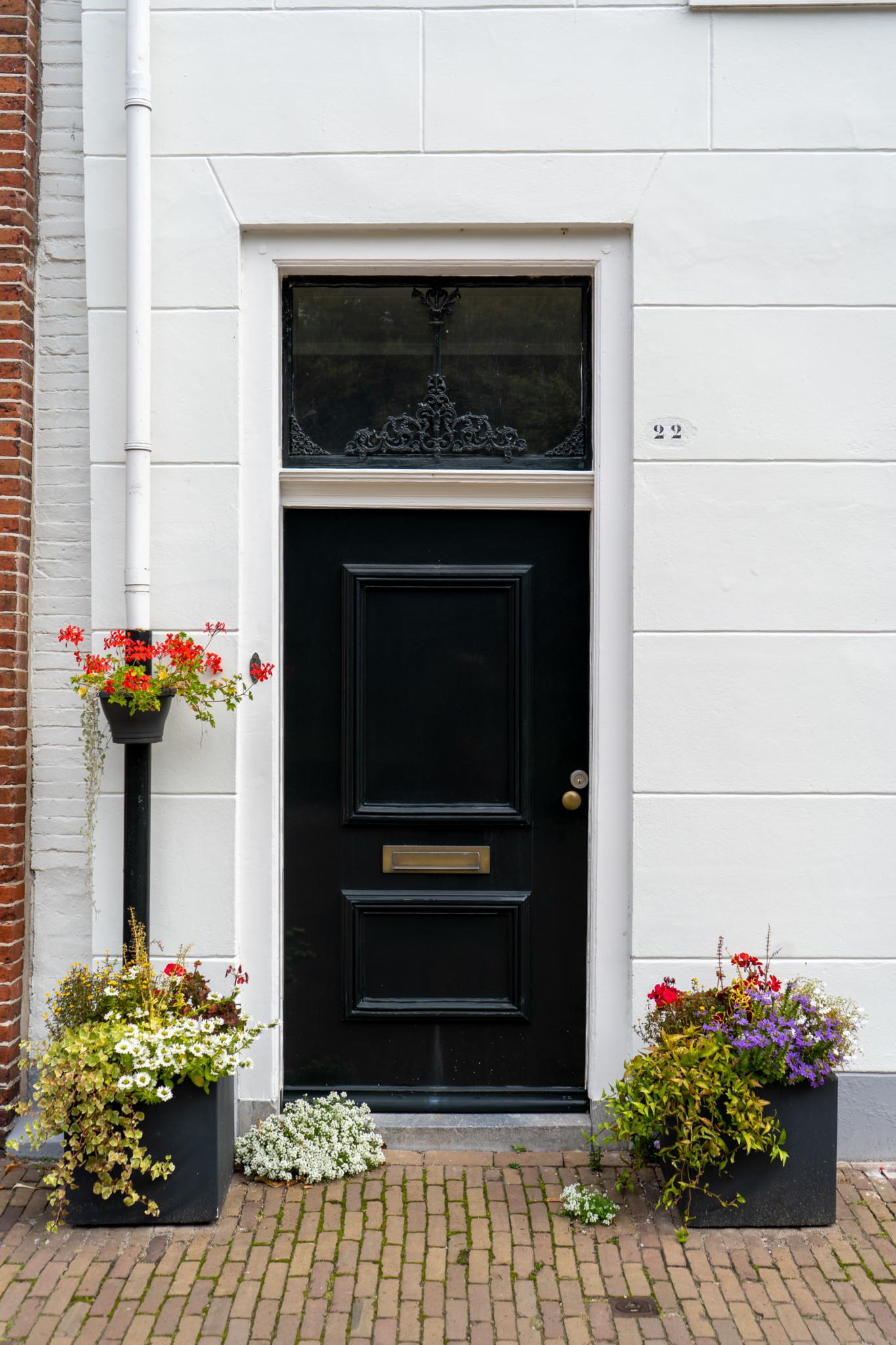 Eine schöne Tür in Holland