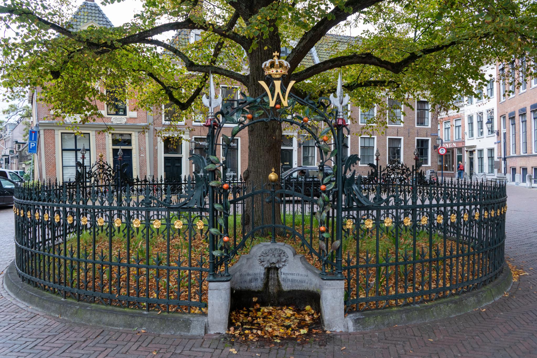Oranjelinde im Innenhof vom Stadhuis Leeuwarden