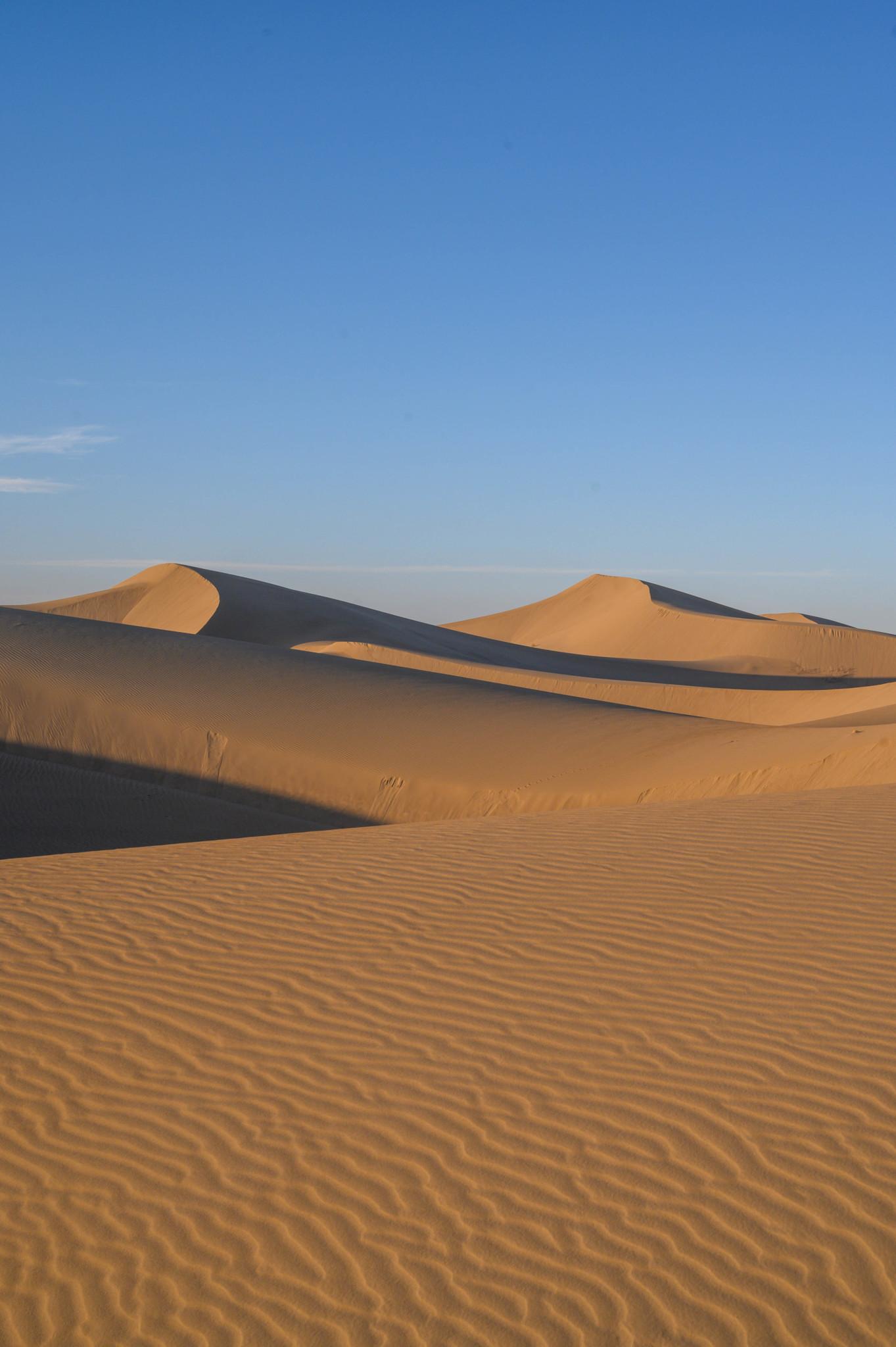 Dünen in der Wüste