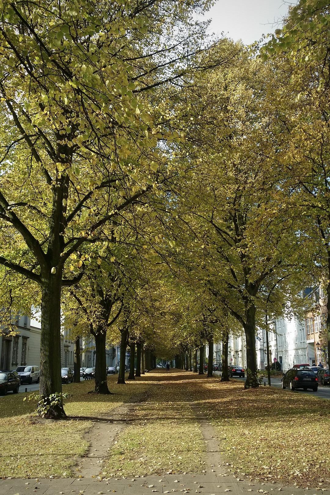 Viele schöne Parks gehören zu den Hamburg Geheimtipps