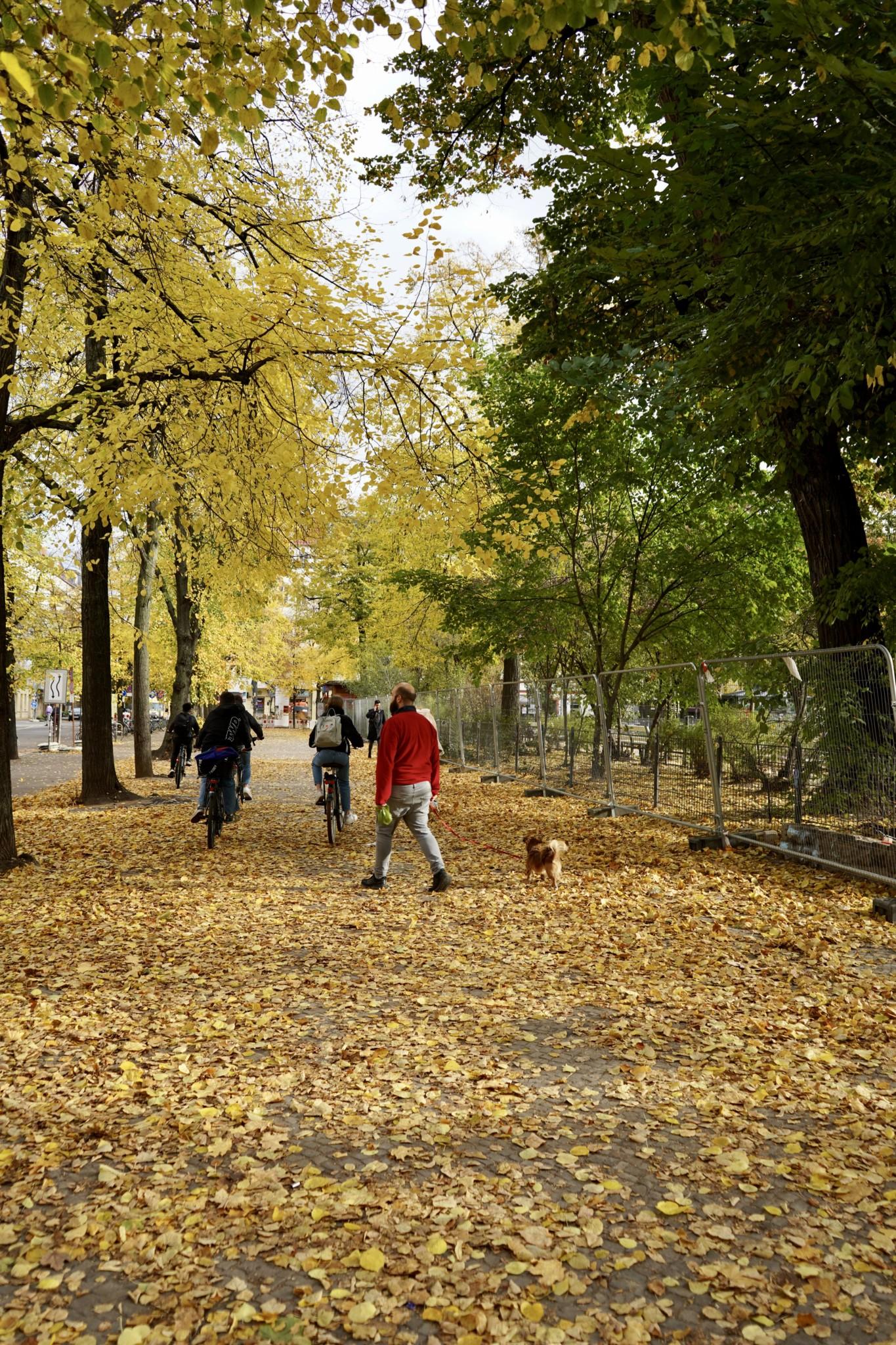 Spaziergang am Boxhagener Platz