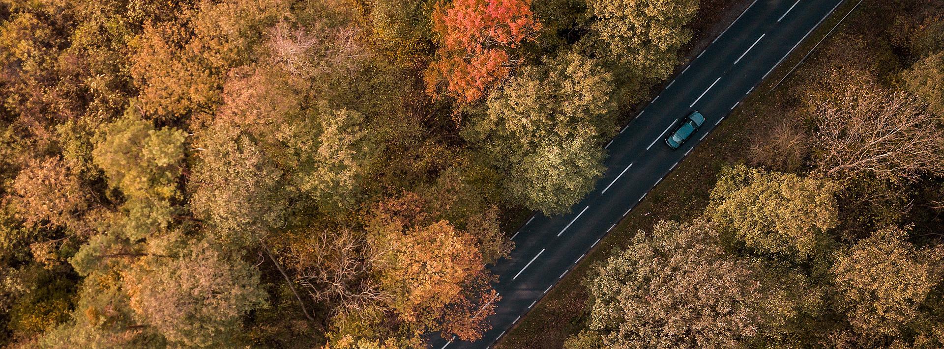 Welcher ist der schönste Deutschland Roadtrip?