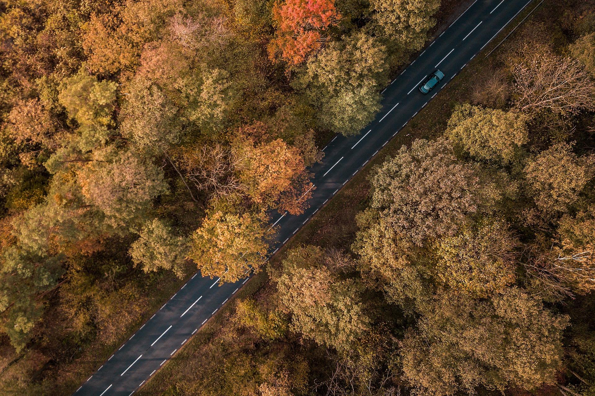 Deutschland Roadtrip: Die 11 schönsten Routen (inkl. Karten)