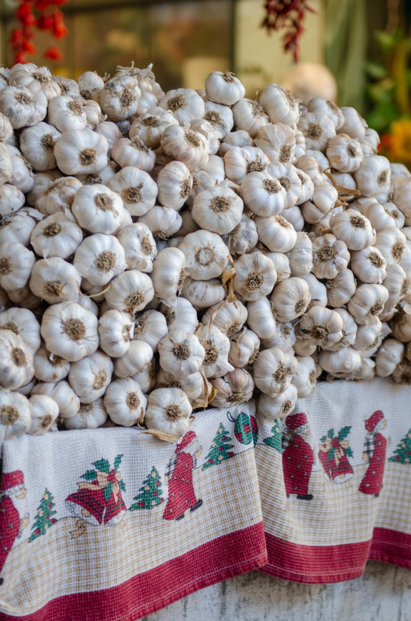 Knoblauch auf dem Mercado do Bolhao