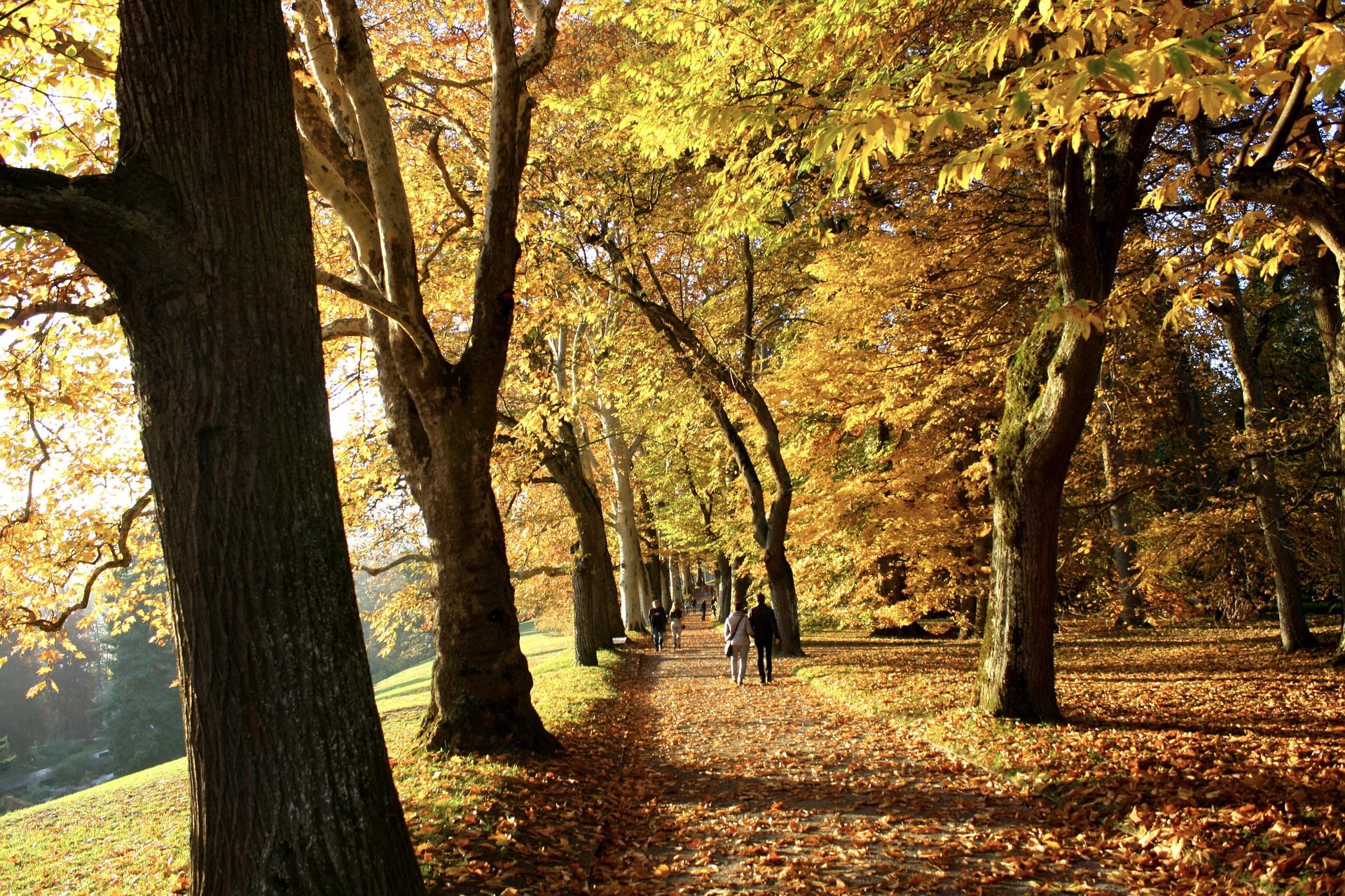Ausflugsziele in der Natur gibt es in Baden-Württemberg viele