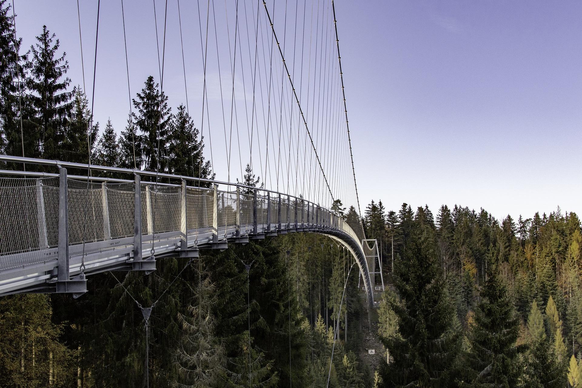 Eine Hängebrücke im Schwarzwald, einem beliebten Ausflugsziel in Baden-Württemberg