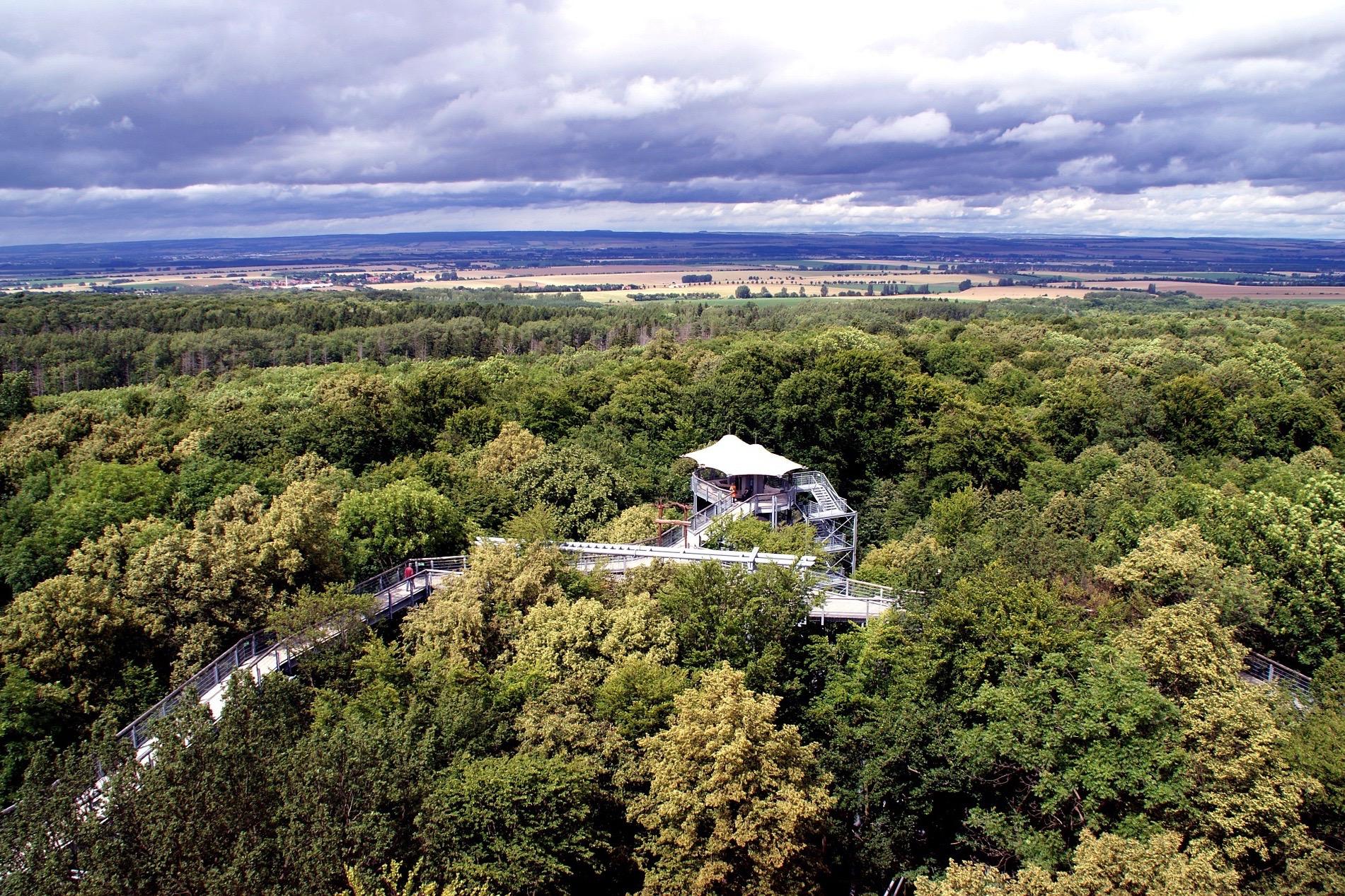 Baumwipfelpfad im Thüringer Wald
