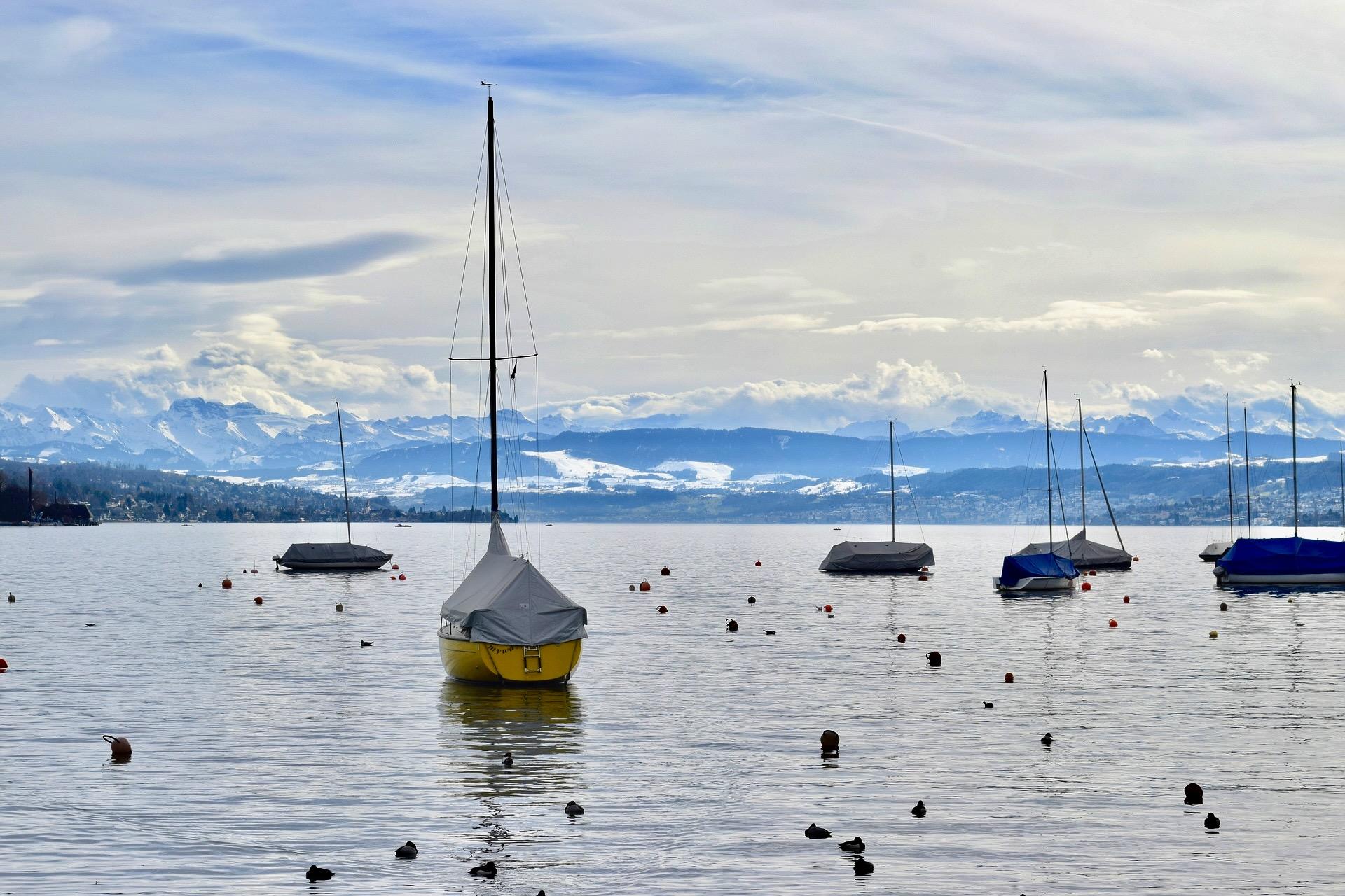 Zürichsee im kalten Februar