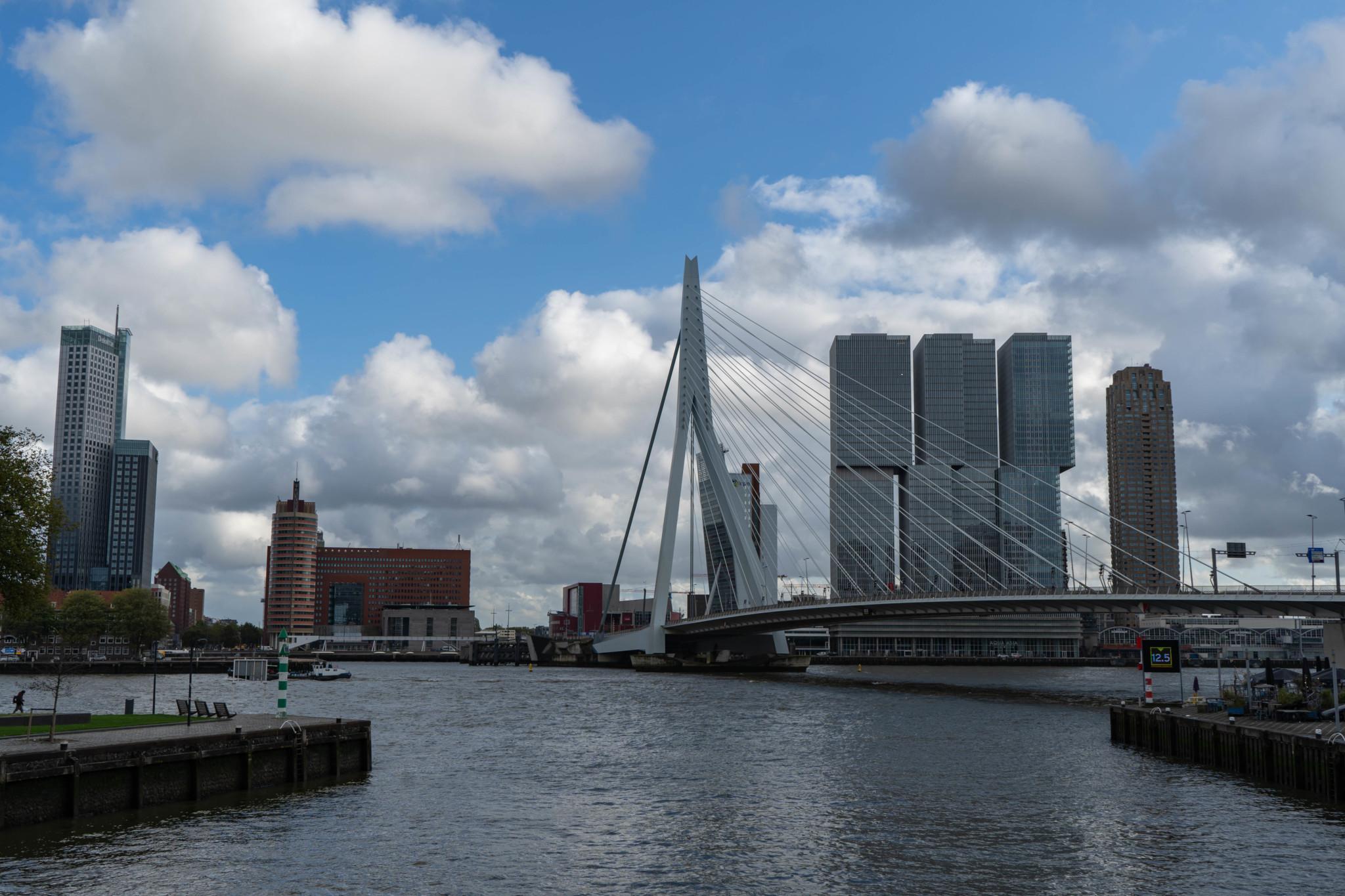 Rotterdam Sehenswürdigkeiten: Erasmusbrücke