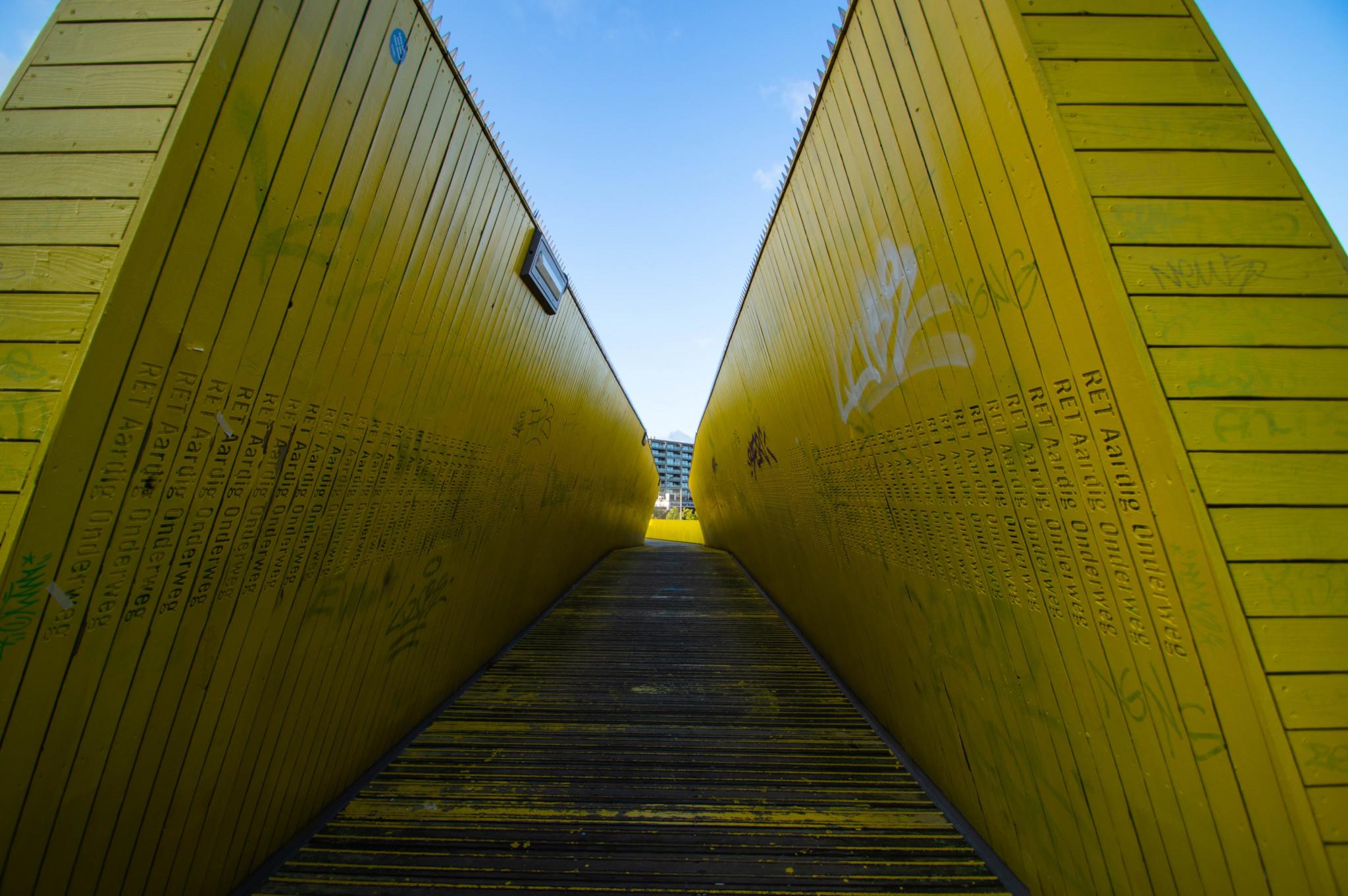 Luchtsingel Holzbrücke Rotterdam
