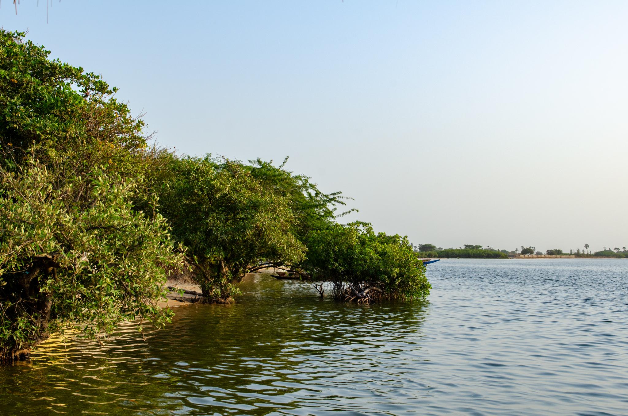 Sine Saloum Delta gehört zu den Senegal Sehenswürdigkeiten