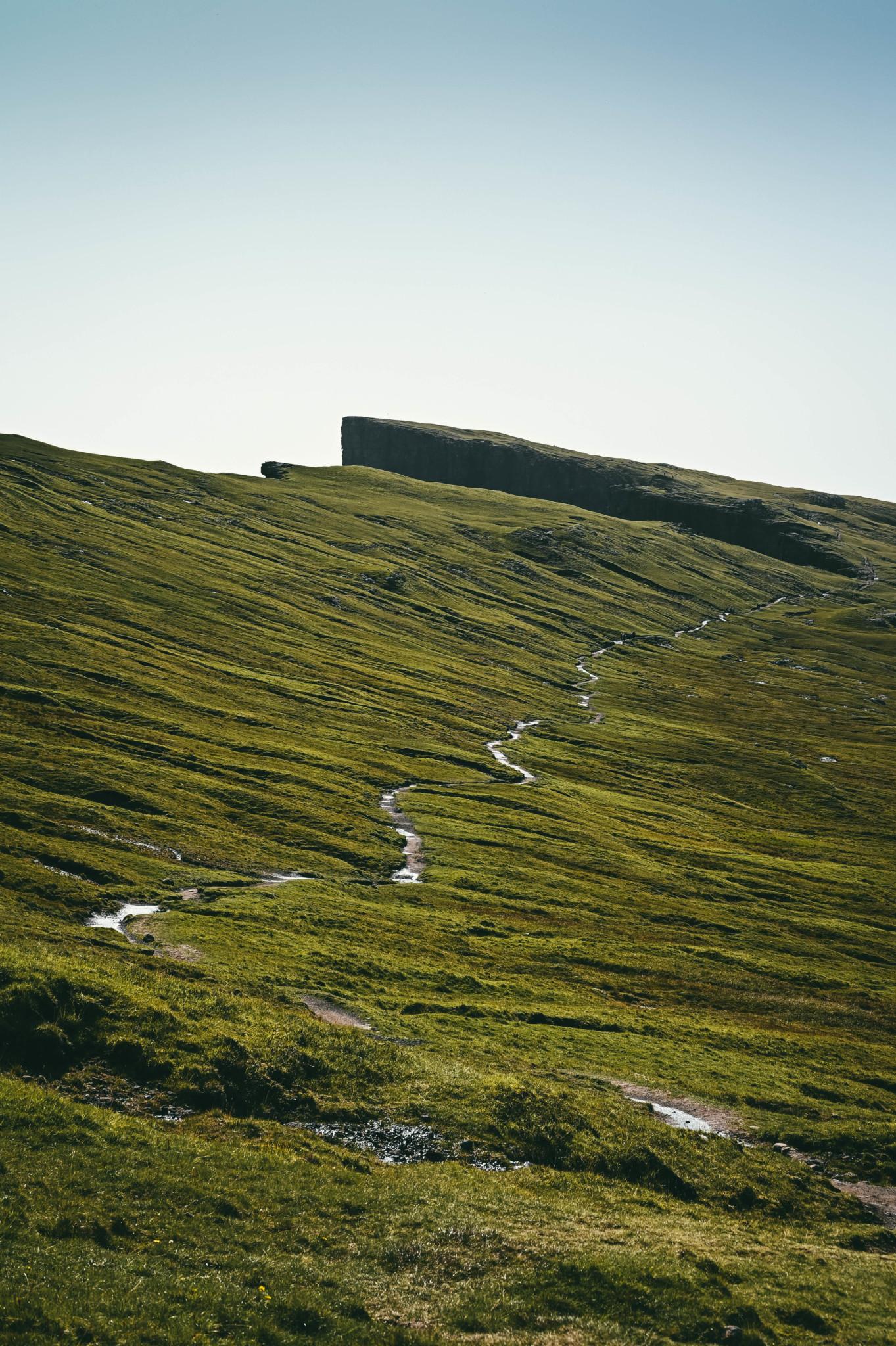 Knallgrün: Typisch Färöer Inseln