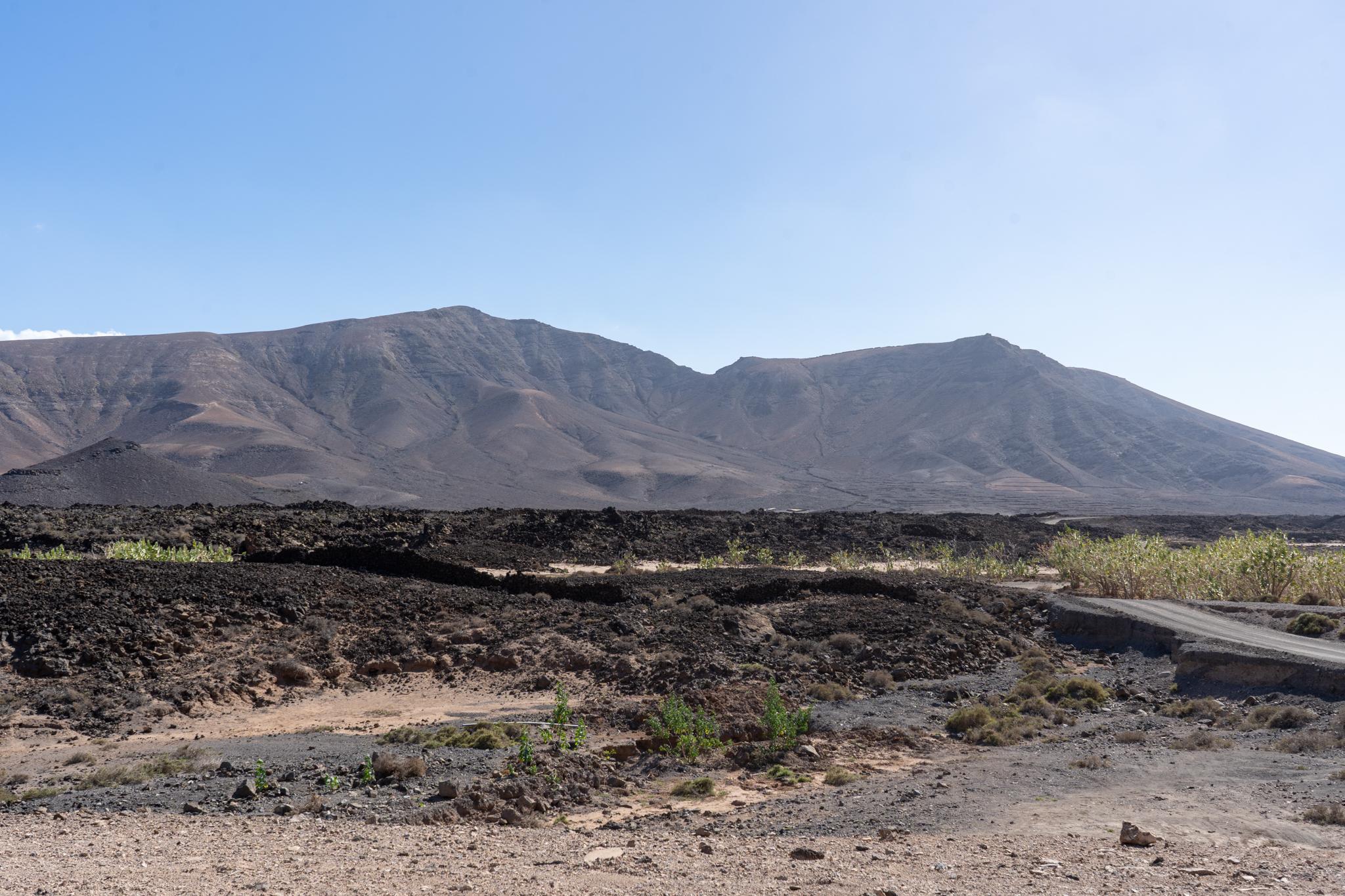 Atayalita auf Fuerteventura