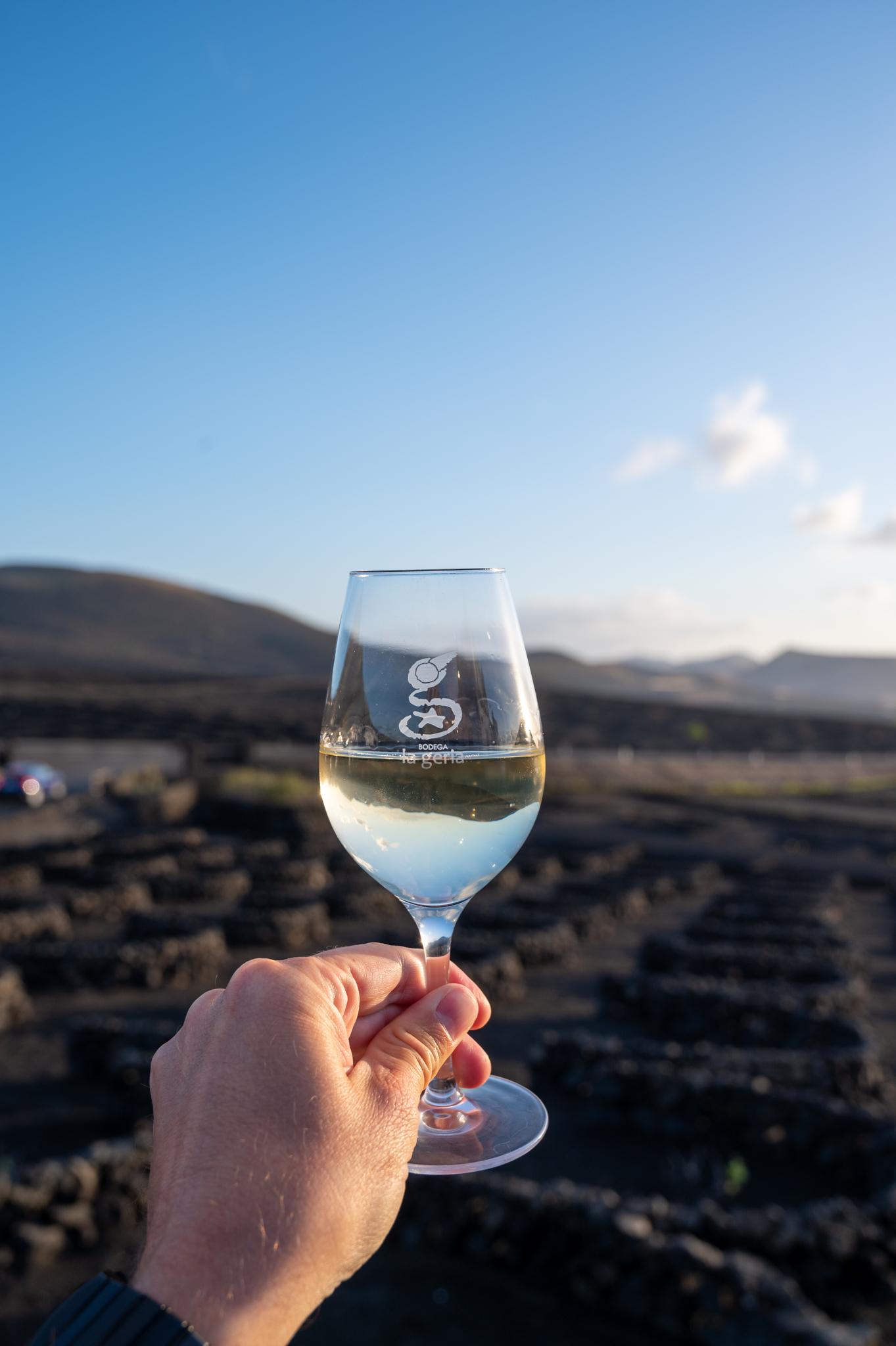 El Grifo Wein auf Lanzarote