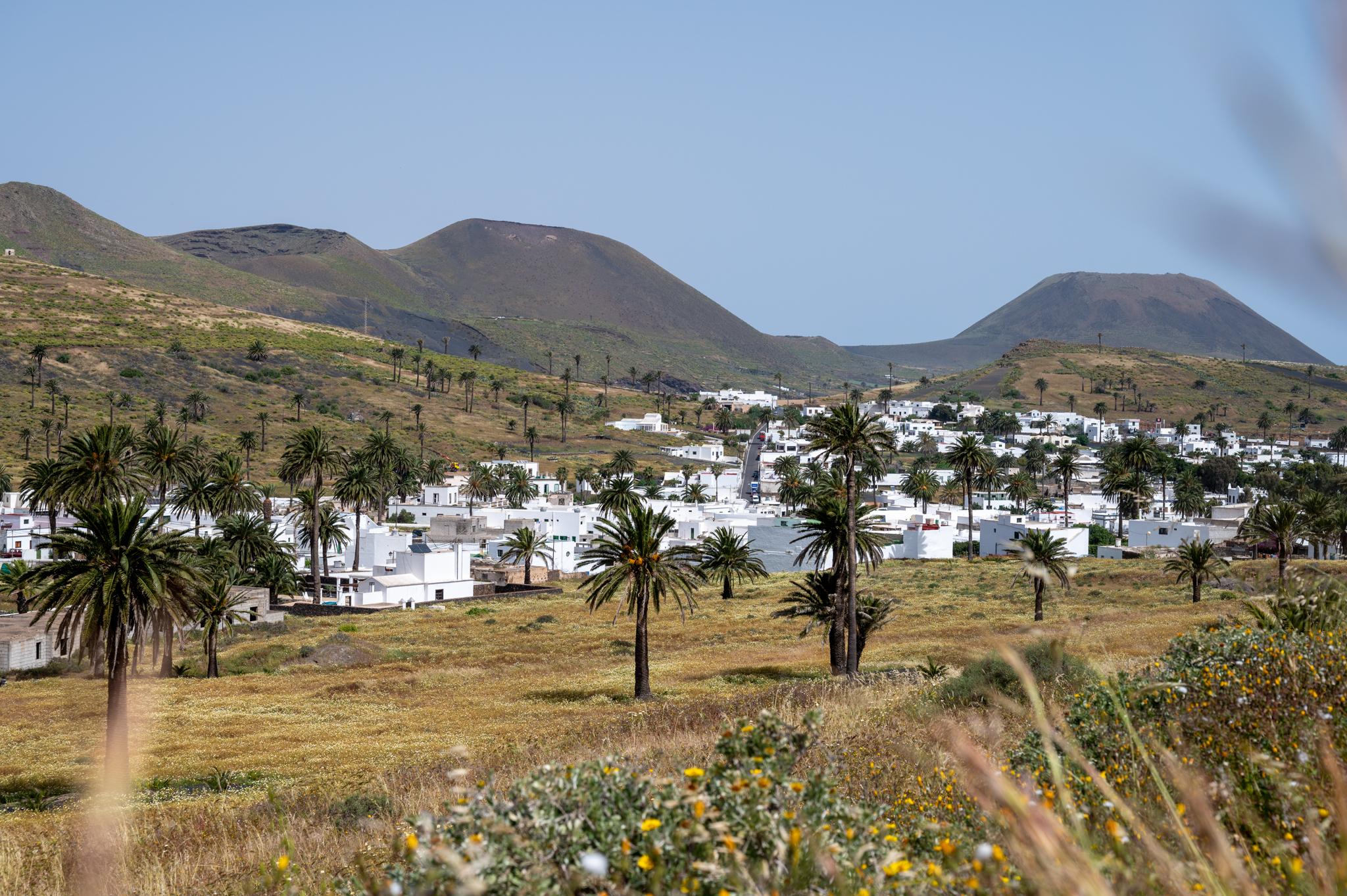 Blick auf Haria auf Lanzarote