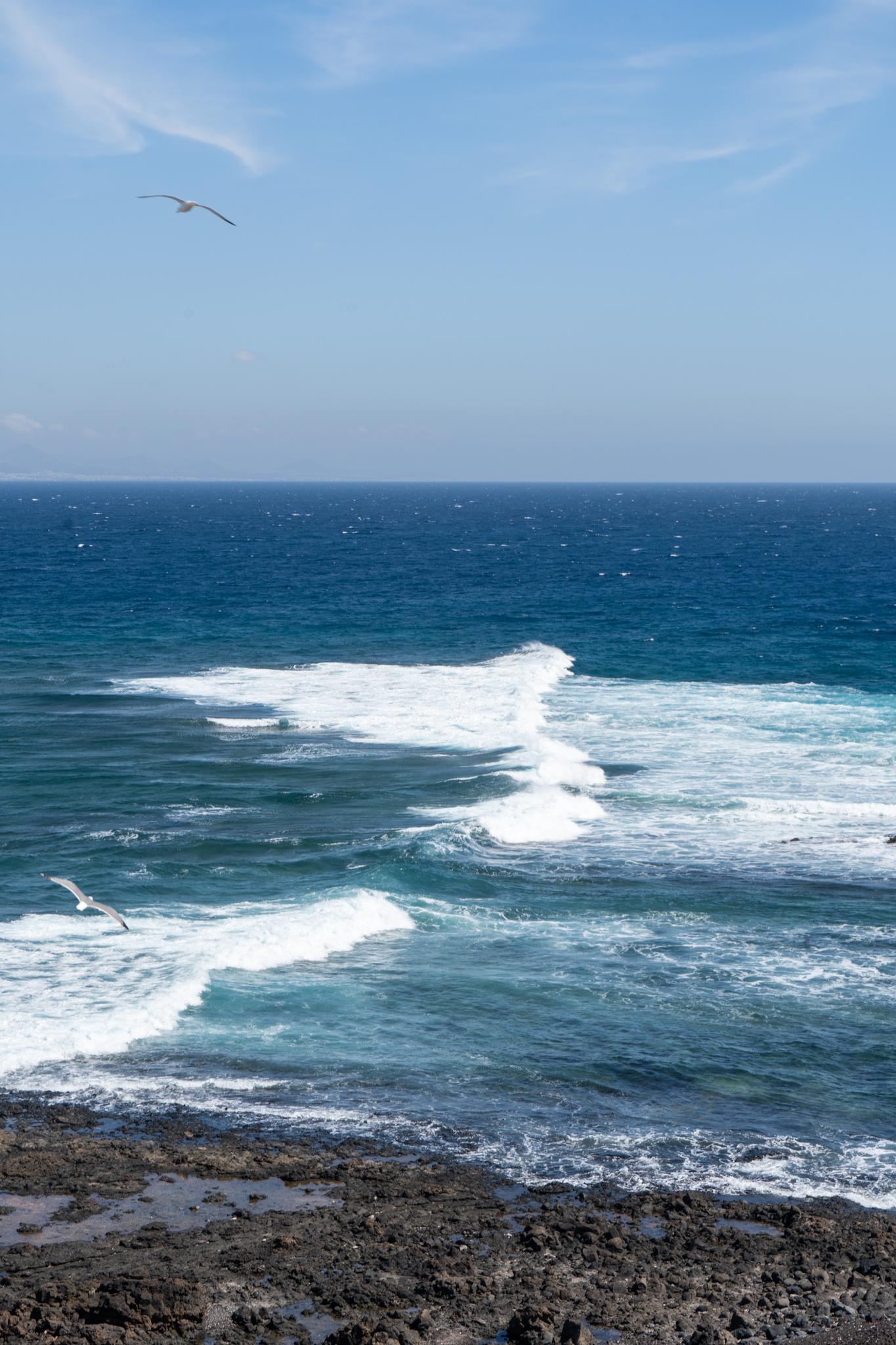 Ausblick aufs Meer auf Lobos