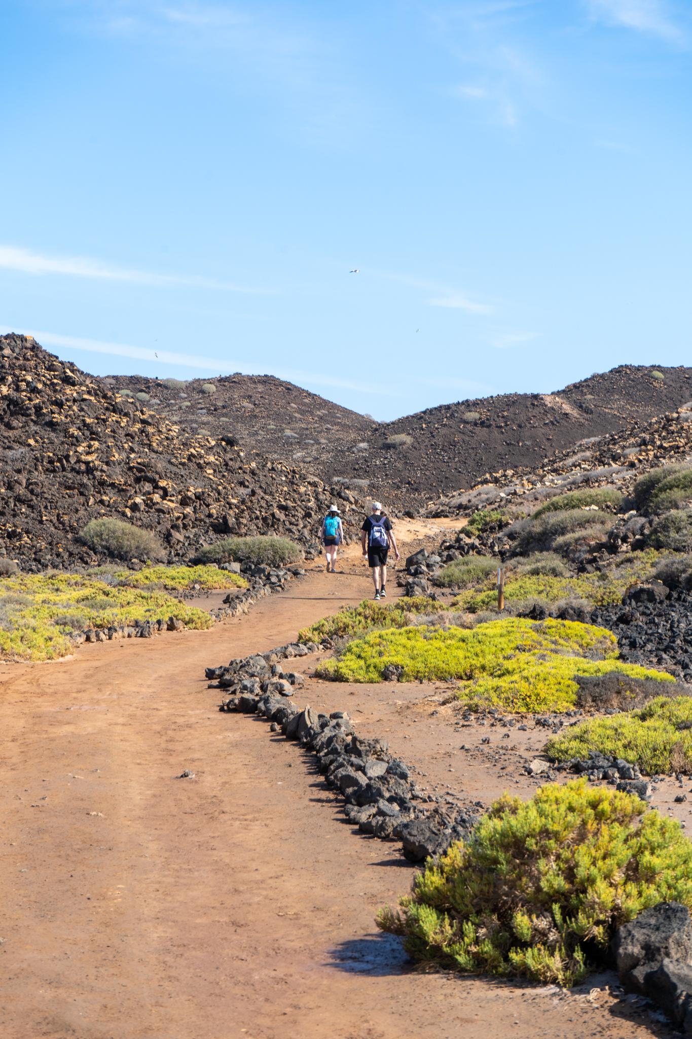 Wandern auf Lobos