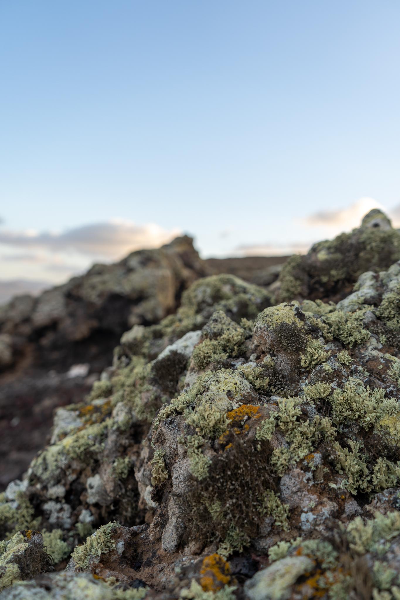 Sehenswürdigkeiten Fuerteventura: Calderon Hondo