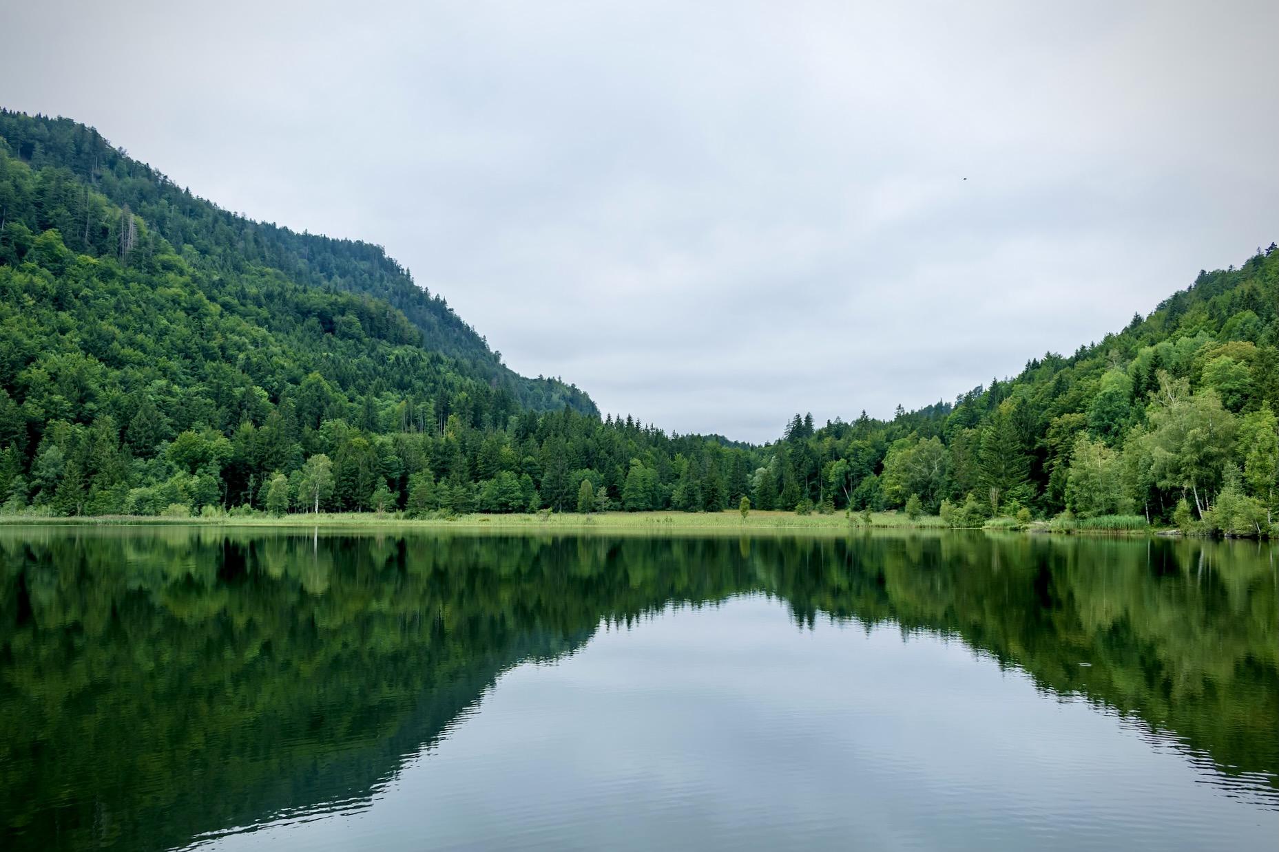 Der Schwansee ist ein beliebter See in Bayern als Ausflugsziel