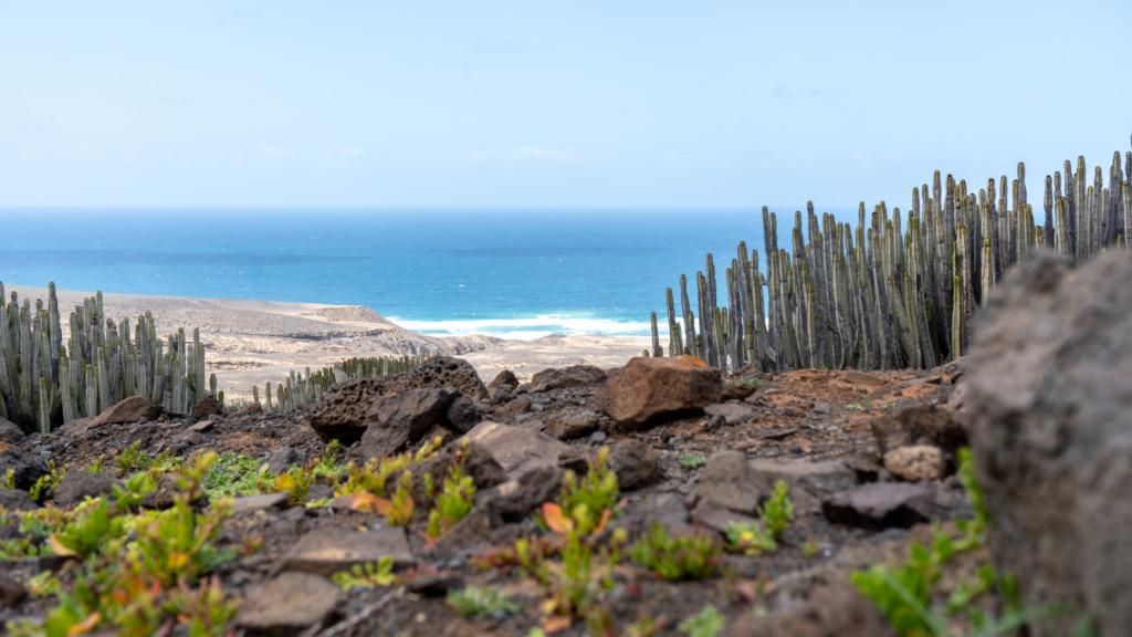 Was sind die schönsten Fuerteventura Strände?