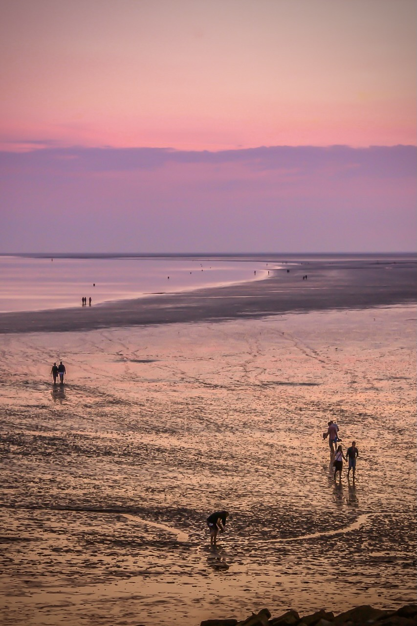 Wattwanderung im Wattenmeer bei Sonnenuntergang