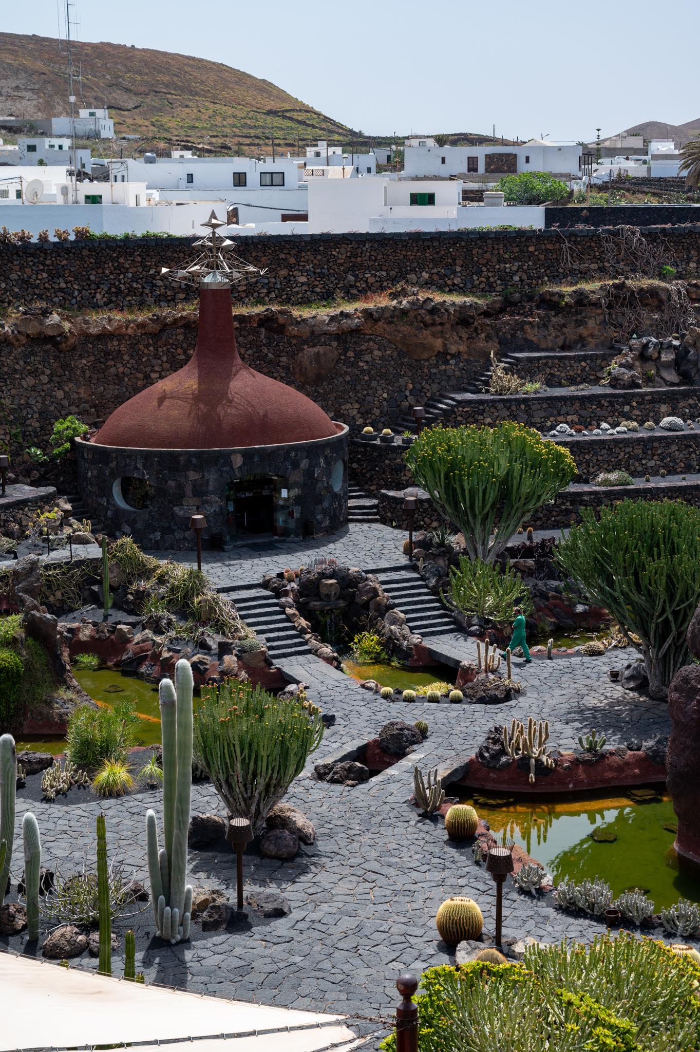 Blick auf den Garten vom Café aus