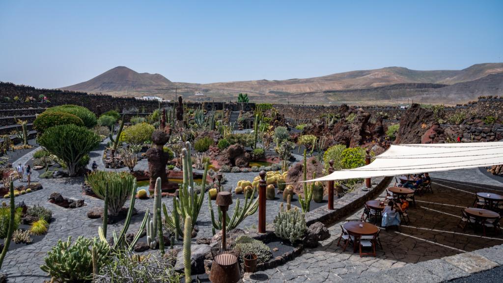 Blick auf den Jardin de Cactus in Lanzarote