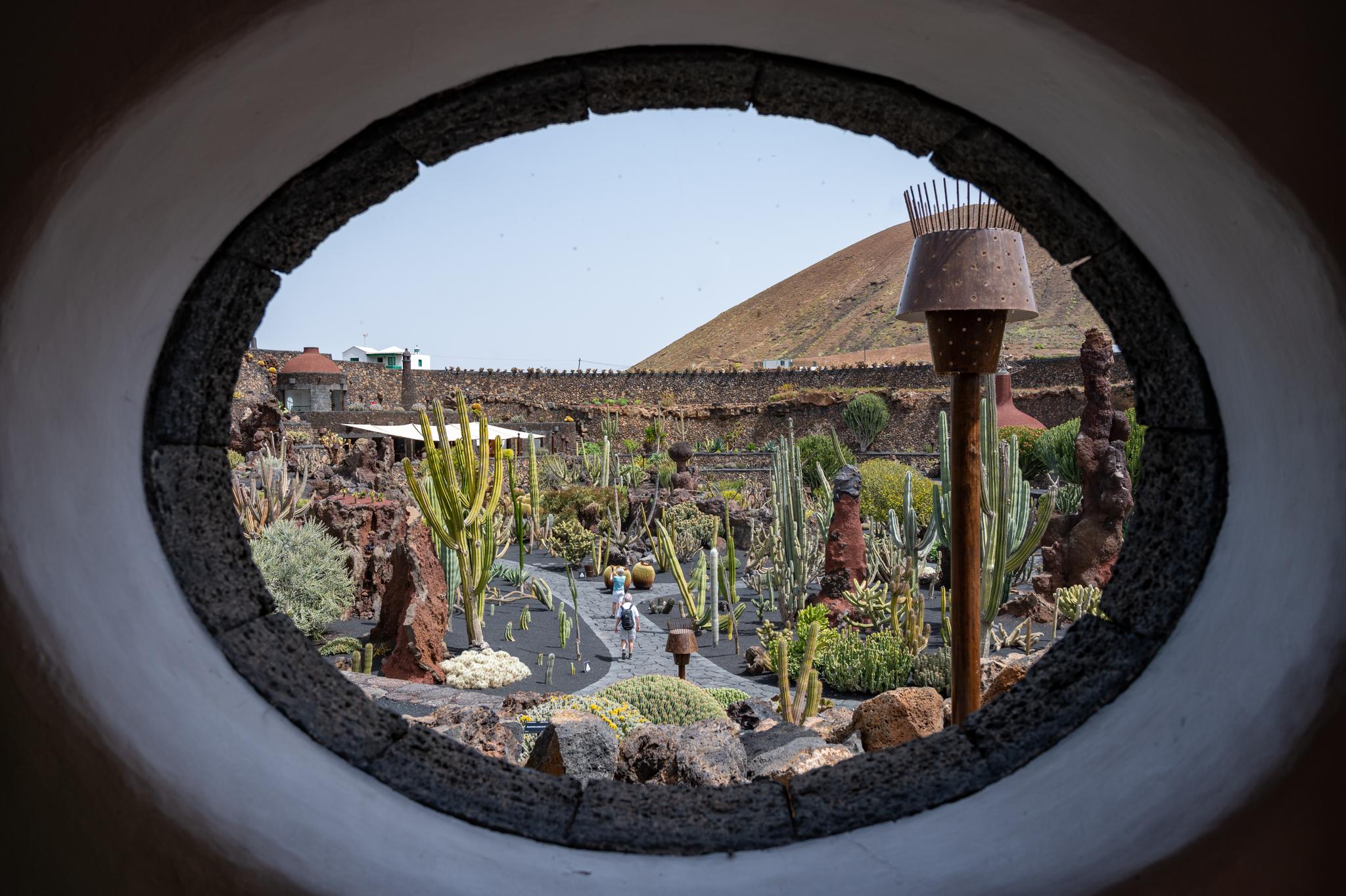 Ausblick aus dem Lavazimmer im Kaktusgarten