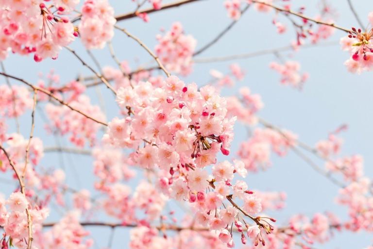 Reiseziele im April – Wo ist es jetzt sommerlich warm?