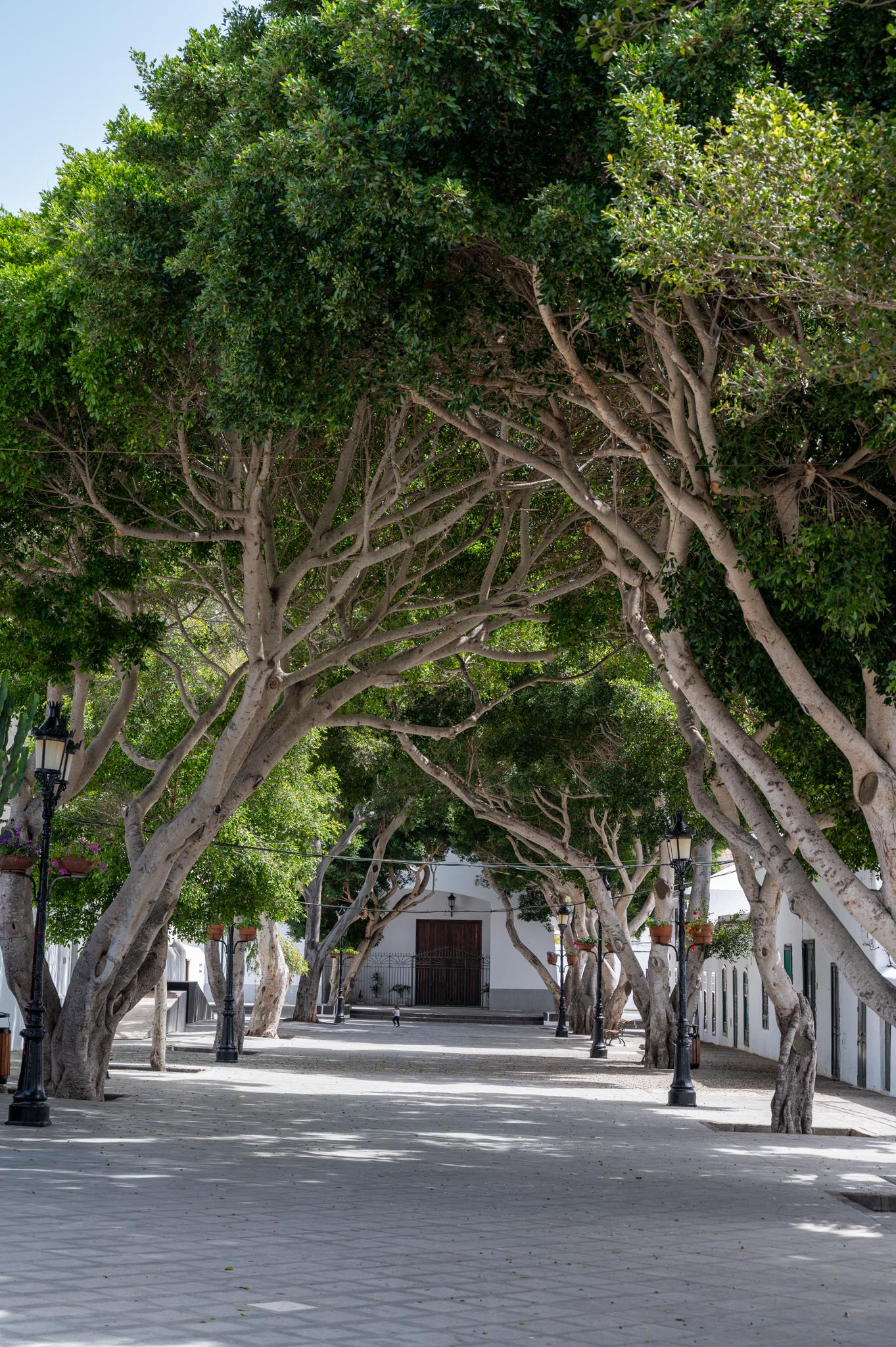 Zentrum von Haria auf Lanzarote
